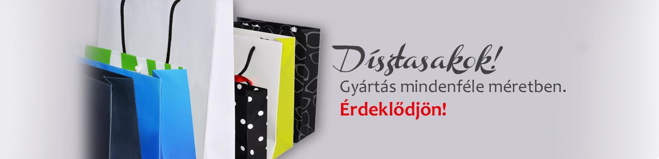 SLIDE-DISZTASK